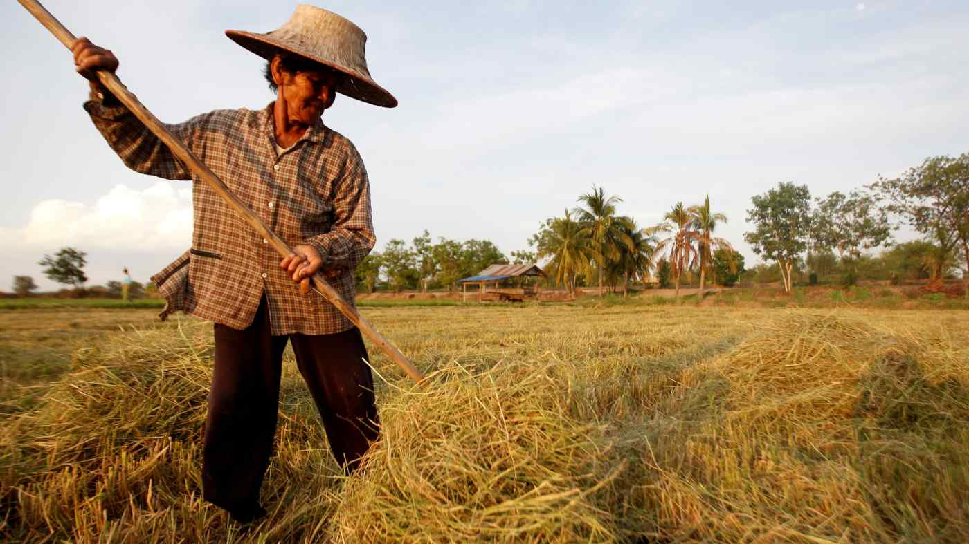 Một nông dân Thái Lan thu gom rơm rạ ở tỉnh Nakhon Sawan, phía bắc Bangkok. © AP