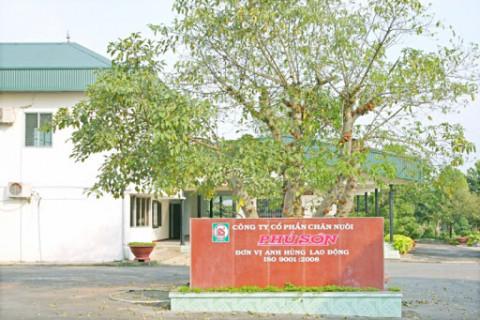 Chăn nuôi Phú Sơn đặt mục tiêu doanh thu gần 105 tỷ đồng
