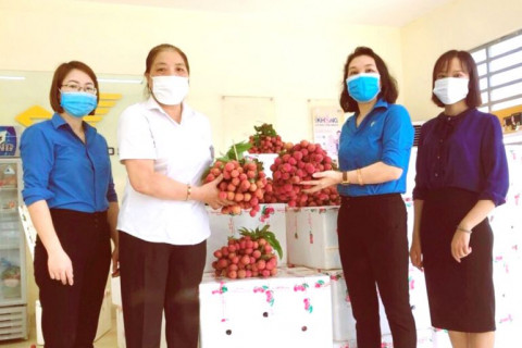 Liên Đoàn Lao động tỉnh Phú Thọ hỗ trợ nông dân Bắc Giang tiêu thụ hơn 50 tấn vải thiều