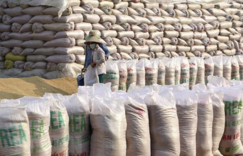 Dấu hiệu gian lận xuất xứ từ việc nhập gạo Ấn Độ, dán mác Việt Nam