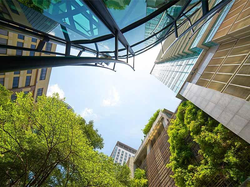 Cứ 10 công ty thì có 7 công ty sẵn sàng trả phí thuê cao hơn cho tòa nhà xanh