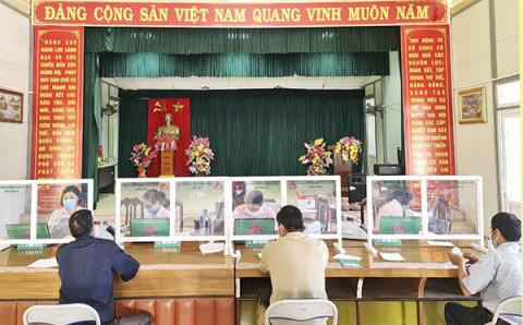Tín dụng chính sách giúp vùng chè Thái Nguyên giảm nghèo bền vững