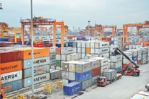Xuất khẩu bền vững trong kiểm soát gian lận thương mại