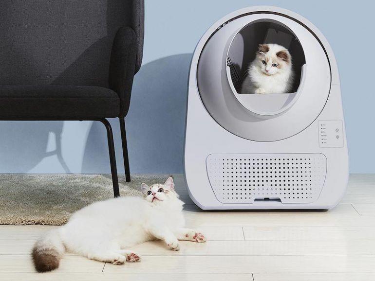 Khởi nghiệp bằng hộp vệ sinh cho mèo, startup bùng nổ doanh thu hơn 100 triệu Nhân dân tệ