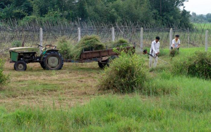 TP Hồ Chí Minh mong muốn đưa khu công nghiệp Phạm Văn Hai vào quy hoạch