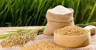 Bộ Công Thương: Đề nghị đối tác chiến lược Philippines dành ưu đãi cho Việt Nam khi có nhu cầu nhập gạo