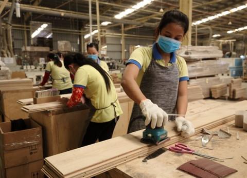 Xuất khẩu lâm sản cả năm dự báo đạt khoảng 15,5 tỷ USD