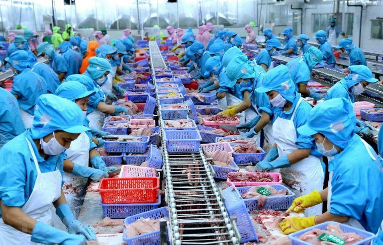 Thủy sản xuất khẩu đi châu Âu nhưng không đủ chuẩn vào siêu thị Việt Nam