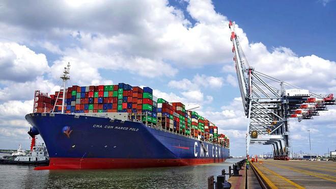 Xuất khẩu phụ thuộc quá nhiều vào hãng tàu ngoại