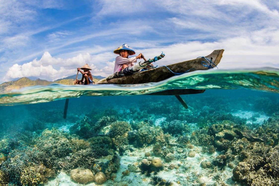 Những ảnh dưới nước thay đổi cách nhìn về đại dương