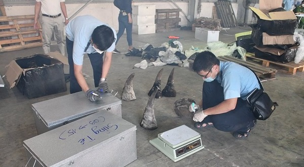 Cục Hải quan TP. Đà Nẵng đang kiểm tra lô hàng
