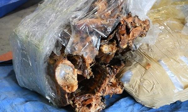 Nhiều xương động vật hoang dã cũng được phát hiện trong lô hàng