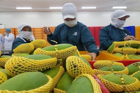 Doanh nghiệp Việt Nam nâng cao cơ hội vào thị trường nông sản Anh