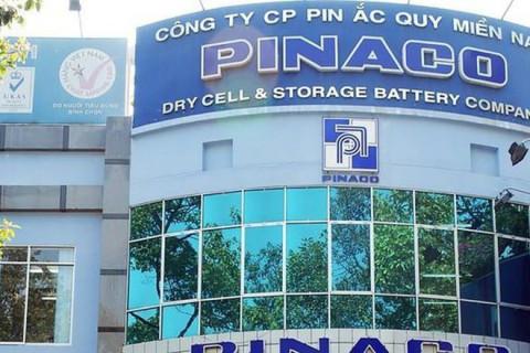 Gia tăng vốn, dòng tiền kinh doanh Pin Ắc quy Miền Nam - Pinaco âm hàng chục tỷ đồng trong 6 tháng