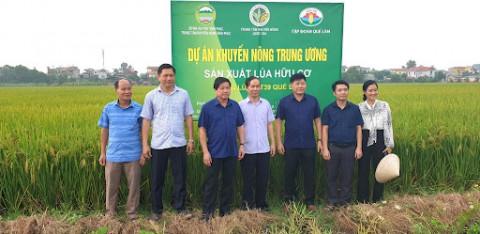 Vĩnh Phúc: Thu hút doanh nghiệp đầu tư vào nông nghiệp, nông thôn