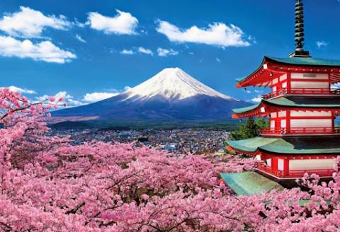 Nhật Bản ra mắt hàng loạt tour du lịch thực tế ảo mùa Covid