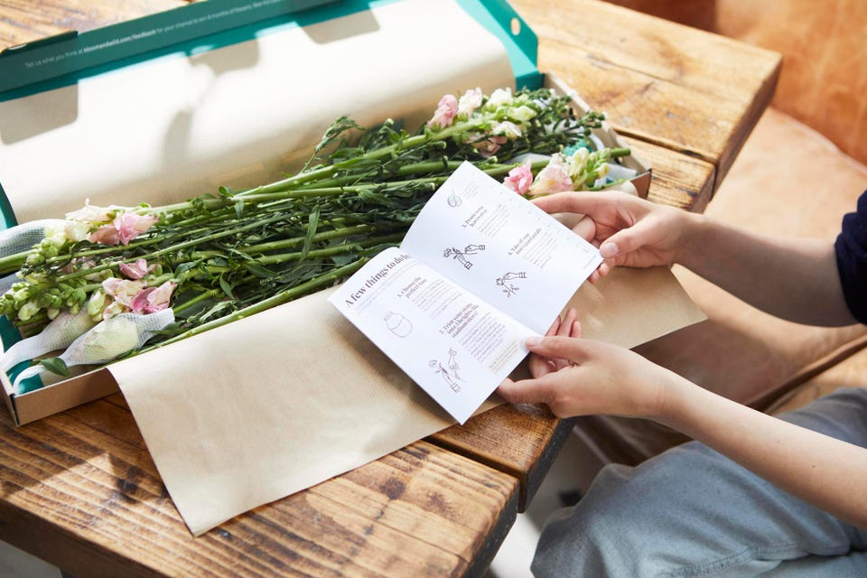 Giám đốc điều hành Gelbard nói rằng 90% doanh số bán hàng là hoa trong hộp thư và 50% khách hàng mới của công ty đã phát hiện ra thương hiệu này sau khi nhận được một bó hoa Bloom & Wild làm quà tặng qua đường bưu điện (Nguồn: BLOOM & WILD).