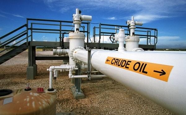 Theo số liệu của Hoa Kỳ, trong năm 2020, kim ngạch xuất khẩu sản phẩm ống dẫn dầu sang thị trường này đạt xấp xỉ 17 triệu USD
