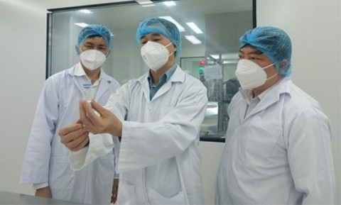 Trước 15/8 phải gửi báo cáo để xem xét cấp phép khẩn cấp vaccine COVID-19 'Made in VietNam'