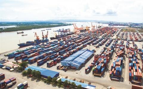 Phát triển Cảng Đình Vũ báo lãi ròng quý II giảm 15%