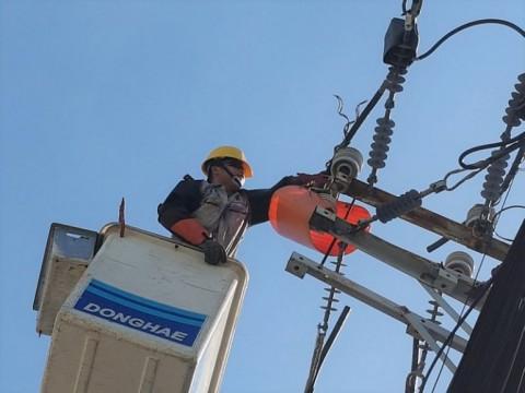 Phân loại, áp dụng mức thuế đúng quy định mặt hàng dây nhôm trần dẫn điện trên không