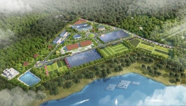 Nghệ An: Phát triển chuỗi giá trị sản xuất ngành lâm nghiệp ứng dụng công nghệ cao hiện đại, bền vững về kinh tế - xã hội – môi trường
