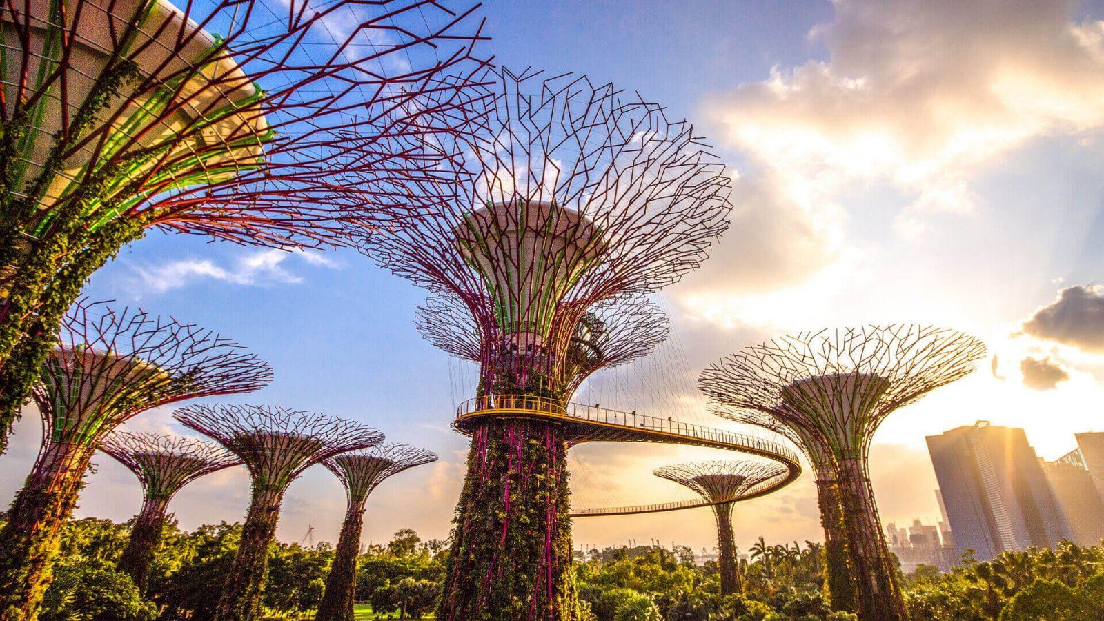 Sáng kiến xanh tại các đô thị lớn
