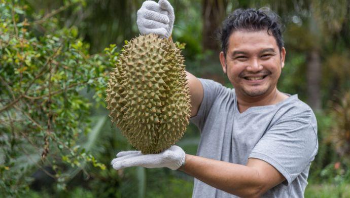 Hệ sinh thái Agritech ở Thái Lan: Hơn 60% công ty khởi nghiệp chưa huy động vốn từ bên ngoài