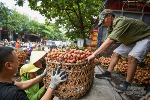 Tiêu thụ nông sản phải tính đến thay đổi cách thức tiếp cận thị trường và bài bản hơn