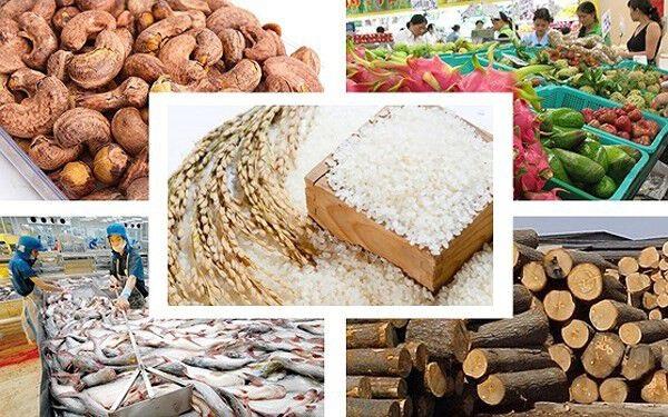 Những mặt hàng nông sản biến động giá trong tháng 8