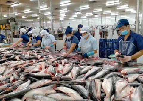 Doanh nghiệp nào không bị Mỹ áp thuế chống bán phá giá cá tra?