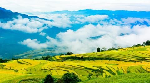 Nét đẹp kỳ vỹ Ruộng bậc thang Hồng Thái