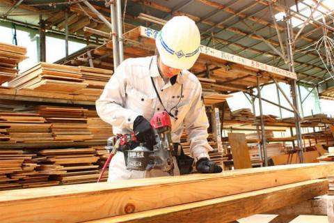 Xuất khẩu gỗ sang thị trường Mỹ rất khả quan