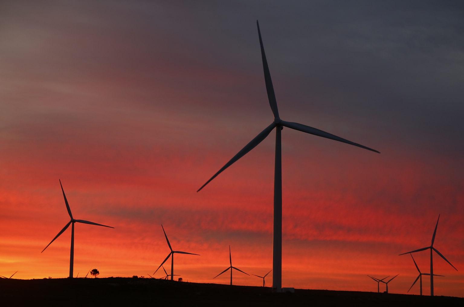 Trang trại gió Vịnh Jeffreys ở Đông Cape. (Ảnh: EPA / Nic Bothma)