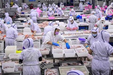 Nền kinh tế Trung Quốc được dự báo tăng trưởng thấp hơn so với nhận định trước đó