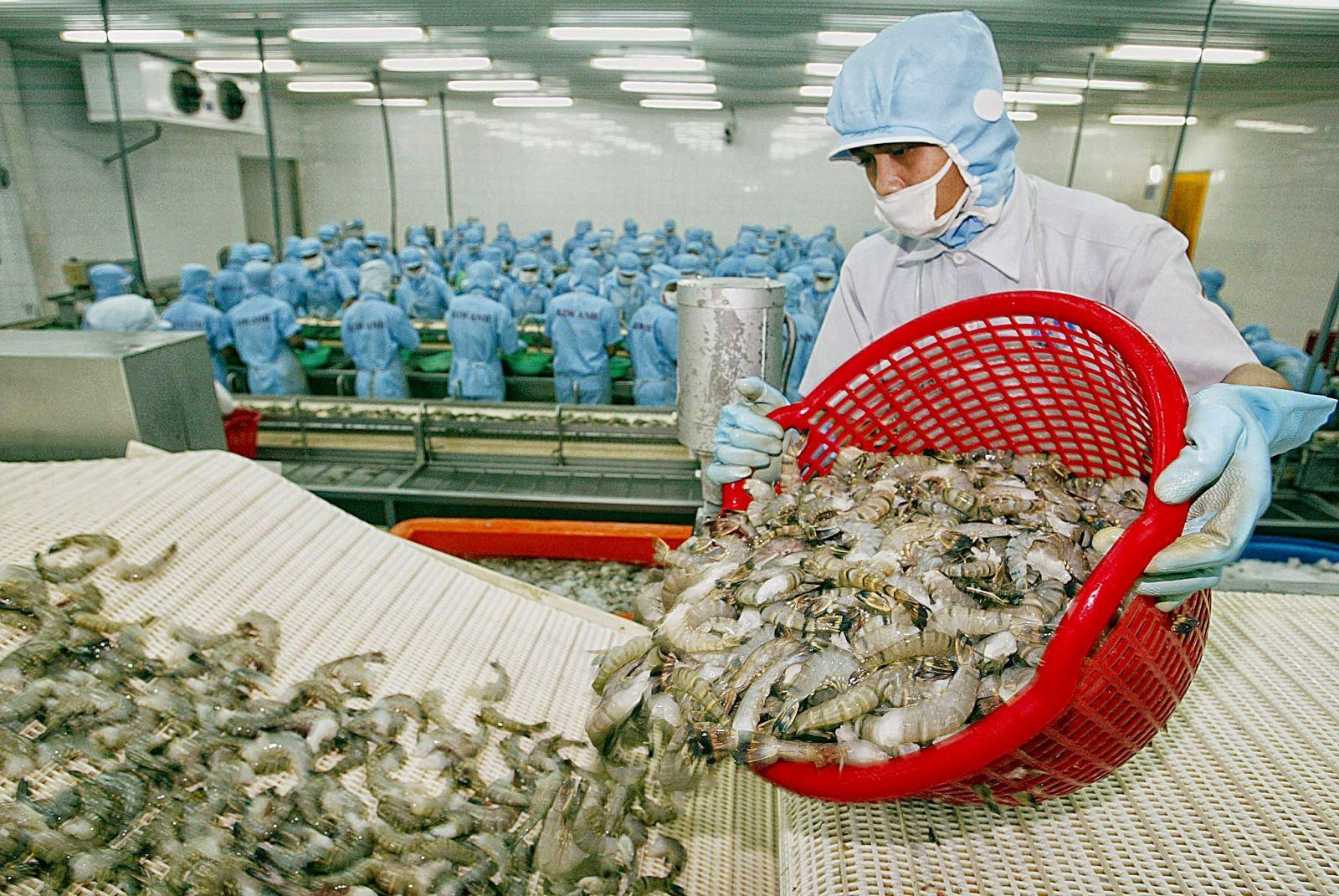 Kim ngạch xuất khẩu thủy sản đạt 5,57 tỷ USD trong 8 tháng đầu năm