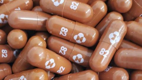 Từ Pfizer đến Shionogi, các hãng dược phẩm nổi tiếng tham gia cuộc đua sản xuất thuốc uống điều trị COVID-19