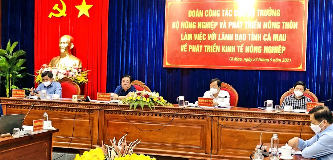 Bộ trưởng Lê Minh Hoan cùng Đoàn công tác Bộ NN-PTNT làm việc với lãnh đạo tỉnh Cà Mau, sáng 24/9. Ảnh: MS-TL.