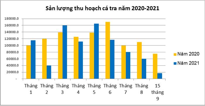 Biểu đồ sản lượng thu hoạch cá tra năm 2020 -2021