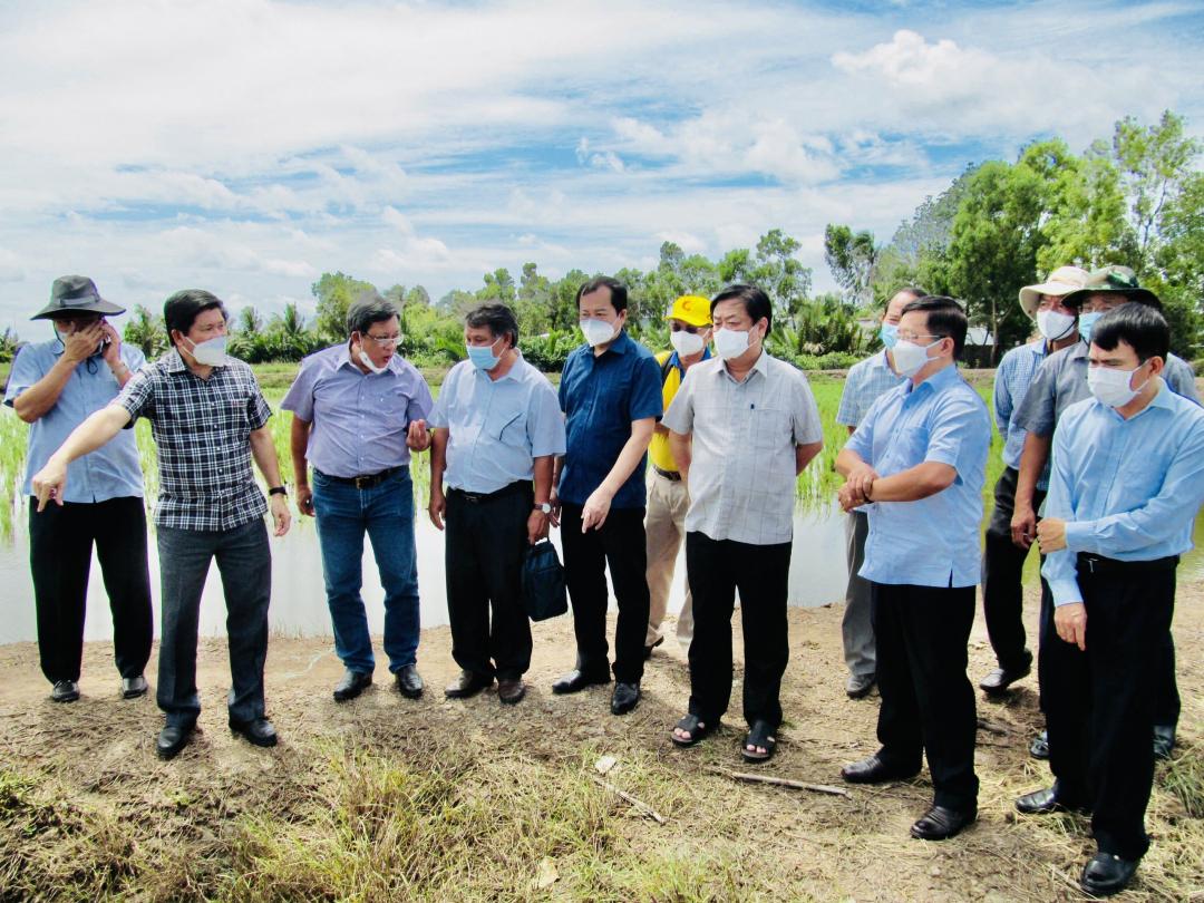 Bộ trưởng Lê Minh Hoan cùng Đoàn công tác Bộ NN-PTNT thăm quan vùng nuôi tôm tại Cà Mau, ngày 23/9. Ảnh: MS-TL.