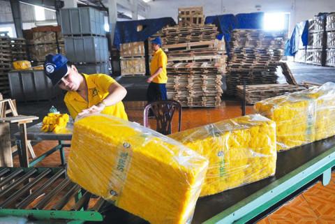 Cao su Việt Nam dần khẳng định vị thế tại thị trường Hoa Kỳ