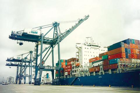 Phát triển Hàng Hải sắp chi gần 11 tỷ đồng trả cổ tức