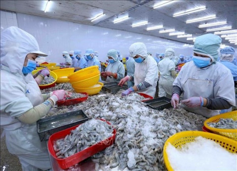 Thị trường Xuất khẩu nông, lâm, thuỷ sản đạt gần 24 tỷ USD trong 8 tháng