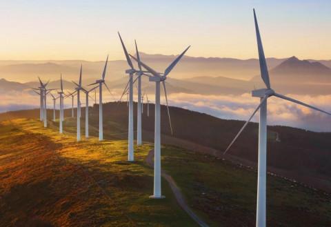 Dự án điện gió sau 31/10/2021 sẽ áp dụng cơ chế đấu thầu
