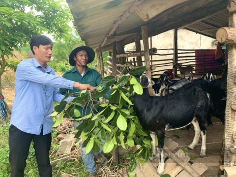 Hành trình 19 năm giúp dân giảm nghèo ở Quảng Bình