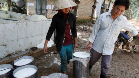 Ngành cao su Việt Nam trước áp lực đáp ứng tiêu chuẩn quốc tế