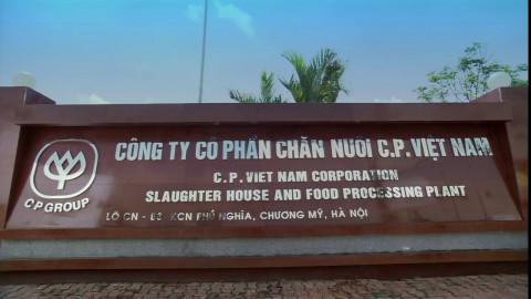 Chăn nuôi C.P cho hàng trăm tỷ thành cổ đông lớn của Thực phẩm Sao Ta