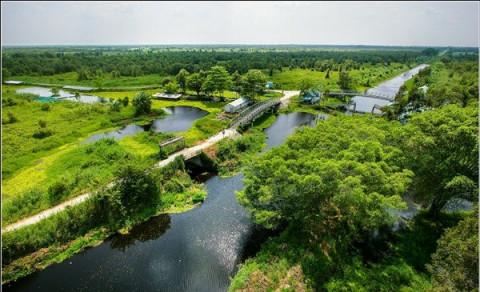 Kiên Giang: Vẻ đẹp hoang sơ mang bề dầy lịch sử từ Vườn Quốc gia U Minh Thượng