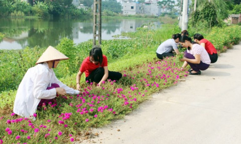 Những đoạn đường hoa phụ nữ ở Phú Thọ: Góp phần tạo cảnh quan môi trường xanh - sạch - đẹp