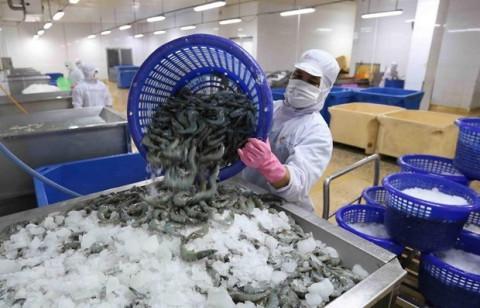 Đồng bằng sông Cửu Long khôi phục sau giãn cách: Tiếp sức doanh nghiệp